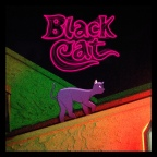 "Valley Boy ""Black Cat"""